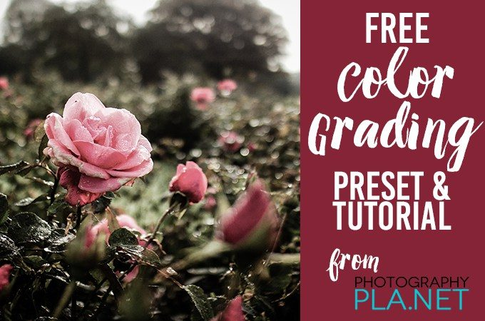 Color Grading Tutorial and Free Lightroom Preset from Photography Pla.net