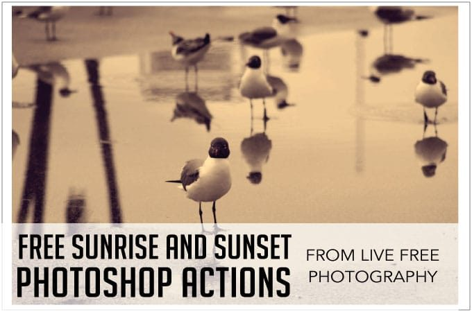 Free Sunrise and Sunset Photoshop Actions from Live Free Photography