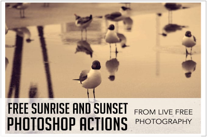 free sunrise sunset photoshop actions from Live Free Photography