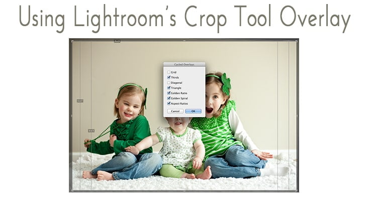 Lightroom Crop Tool Overlay Tutorial - News Pro 740x400