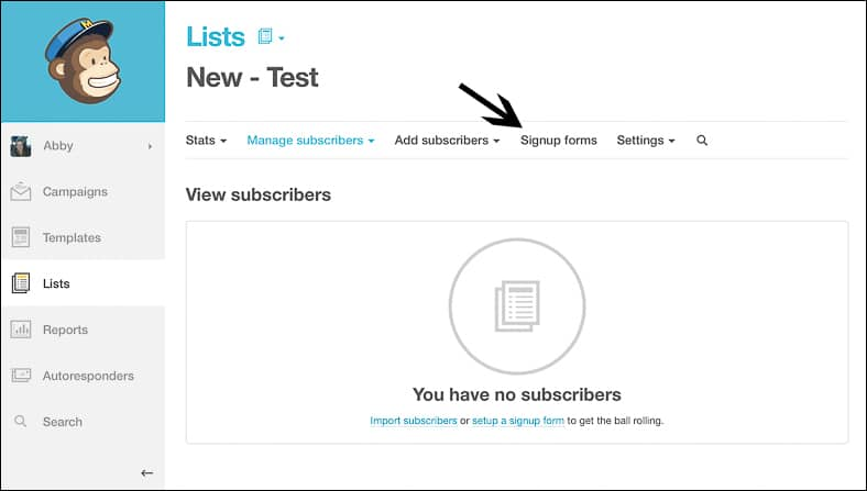 How to set up an Email Newsletter using MailChimp WordPress - Signup Forms - LR
